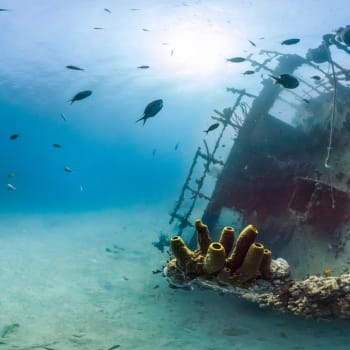Wreck of German freighter from World War II 5 | Arubiana