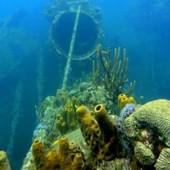 Wreck of German freighter from World War II 7   Arubiana