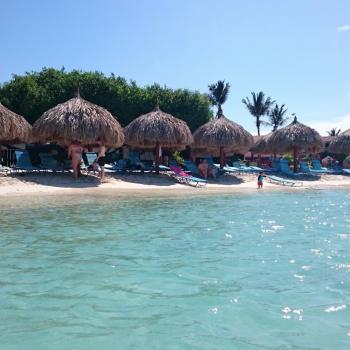 De Palm Reef Island 1 | Arubiana
