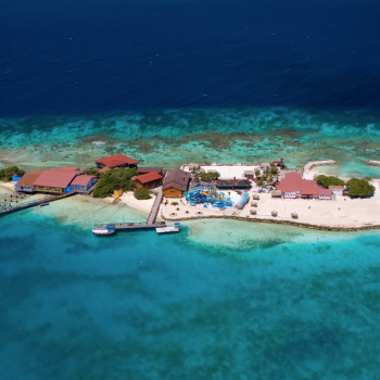 De Palm Reef Island 3 | Arubiana