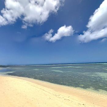 Savaneta beach and picnic grounds 1 | Arubiana