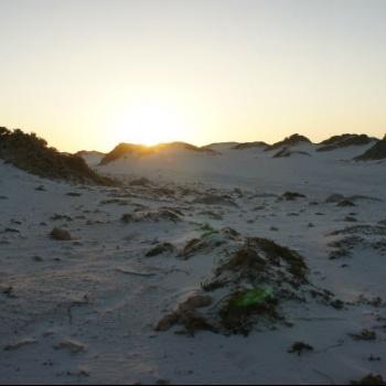 Sand dunes of California 1 | Arubiana