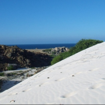 Sand dunes of California 2 | Arubiana