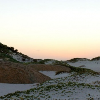 Sand dunes of California 3 | Arubiana