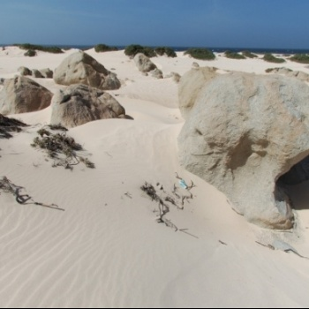 Sand dunes of California 4 | Arubiana