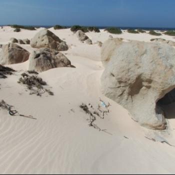 Sand dunes of California 4 | Arubiana
