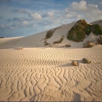 Sand dunes of California 5 | Arubiana