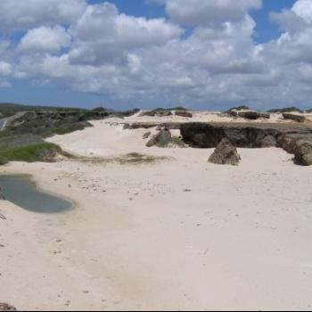 Sand dunes of Prins 1 | Arubiana