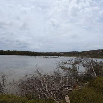 Spanish Lagoon 1   Arubiana
