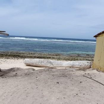 Rincon Beach 4 | Arubiana