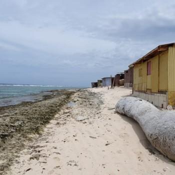 Rincon Beach 5 | Arubiana