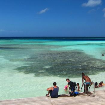 Mangel Halto Beach 3 | Arubiana