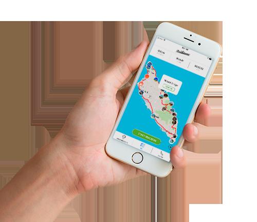 arubiana mobile app | buggy rental aruba